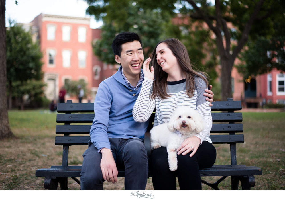 DC engagement session, Dog, Blagden Alley, Kramerbooks 0004.JPG