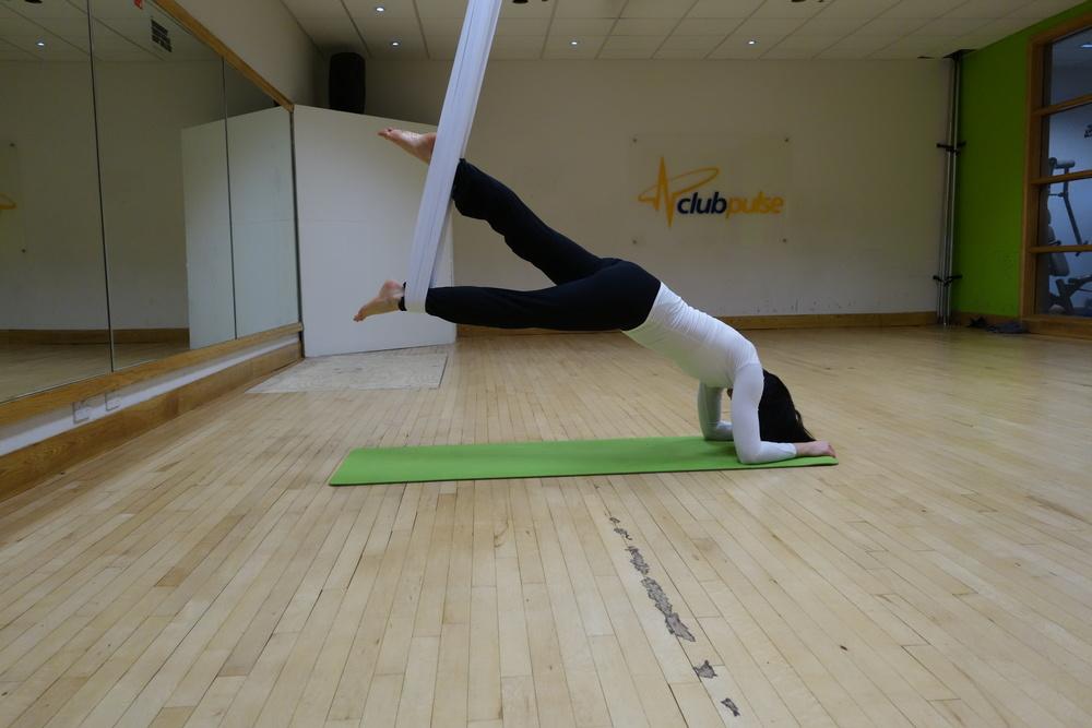 plank_leg.JPG
