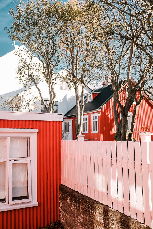 iceland.vik.reykjavik.elopement.©2018mileswittboyer-5.jpg