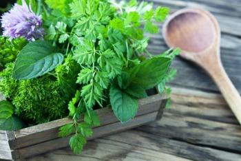 herbs 11.jpg