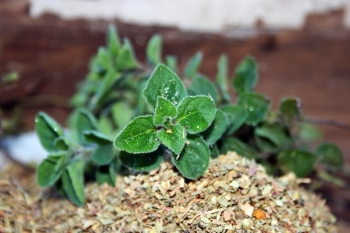 herbs 10.jpg