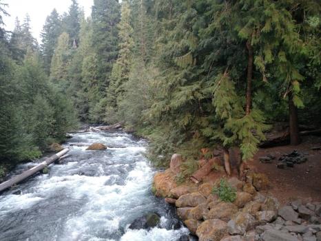 Oregon 14.jpg