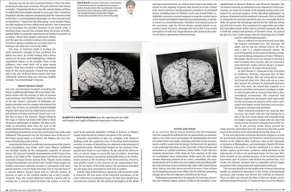 Einstain_Brain_PlamenPetkov_p2.jpg