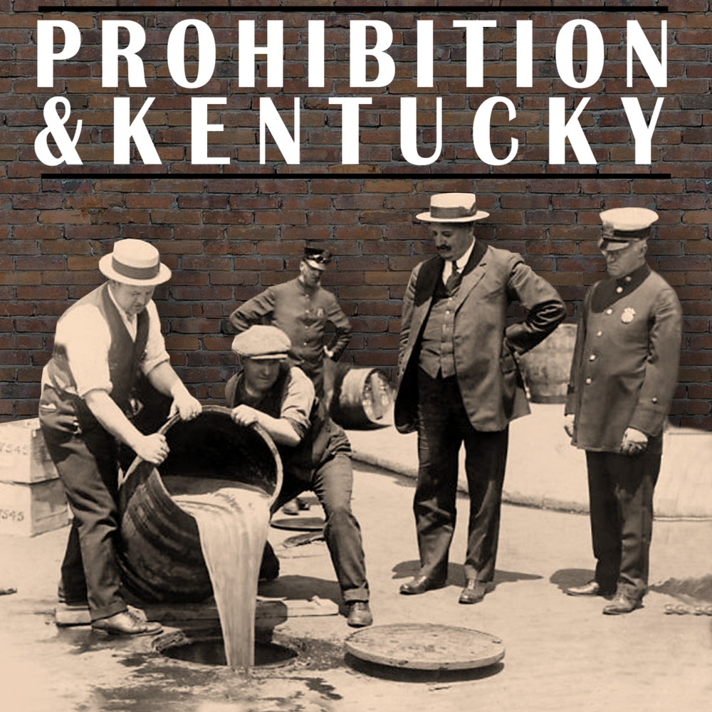 Prohibition web button 2.png