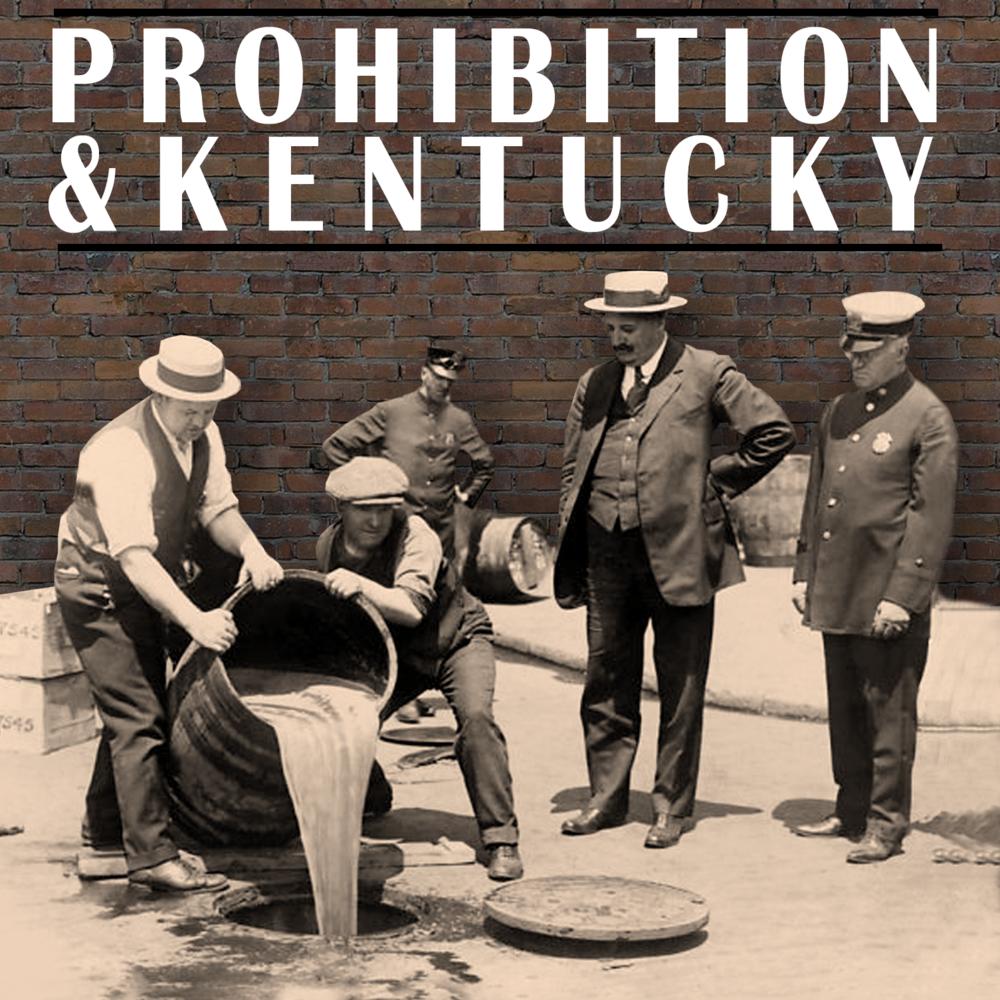 Prohibition web button 2.png