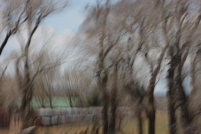 Staver_landscape_hay.JPG