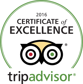 tripadvisor_excellence_pub_crawl_cologne