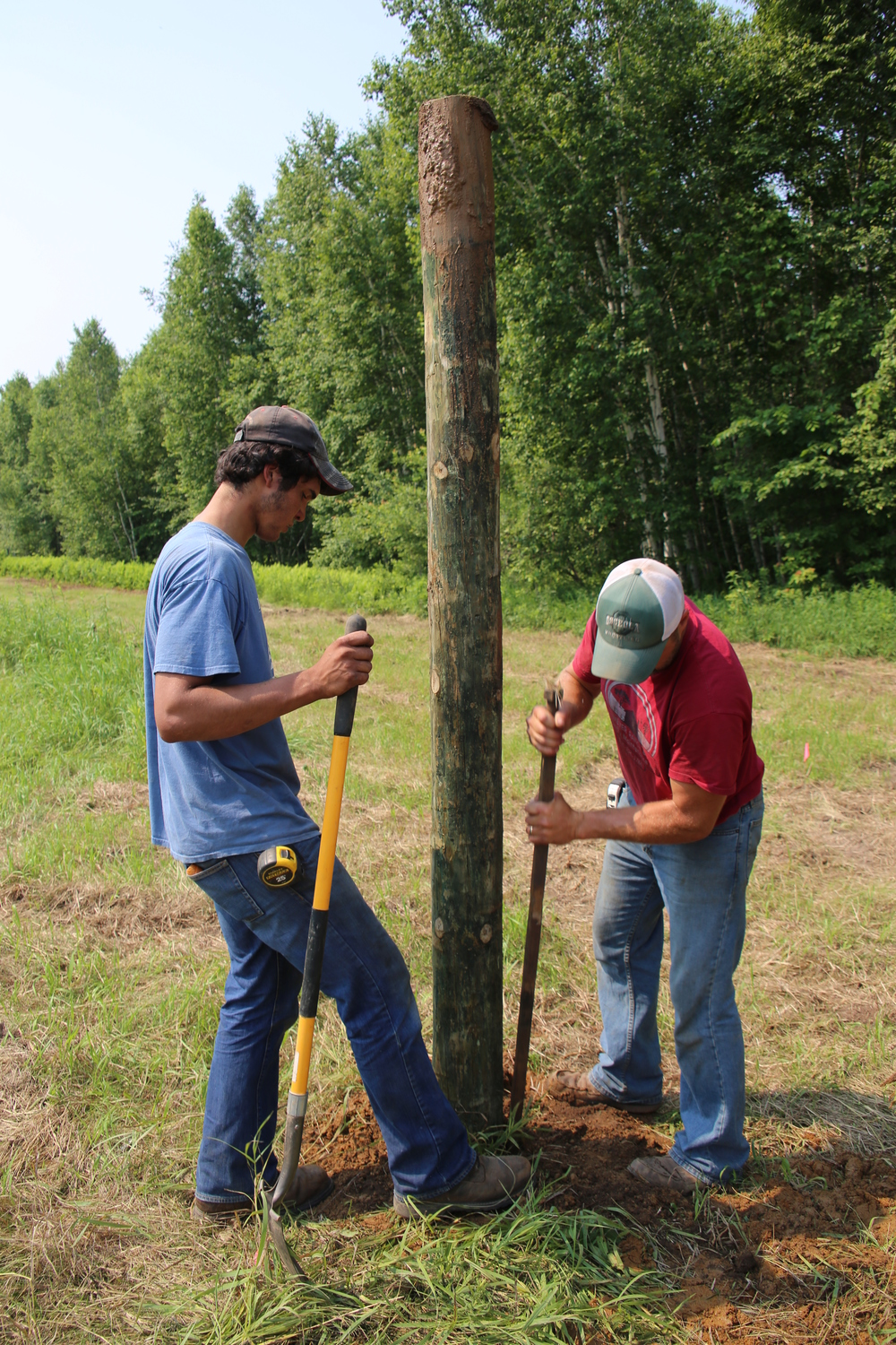 Tyler and Bryan shovel and tamp the soil around one of about 200 Red Pine posts in the South field.