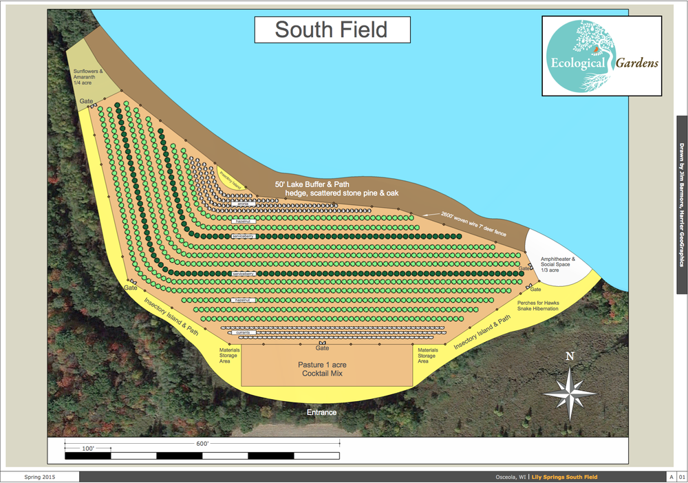 These plans, designed by Paula Westmoreland of Ecological Gardens and drawn by Jim Barmore of Harrier GeoGraphics, show a preliminary layout of our hazelnut operations.