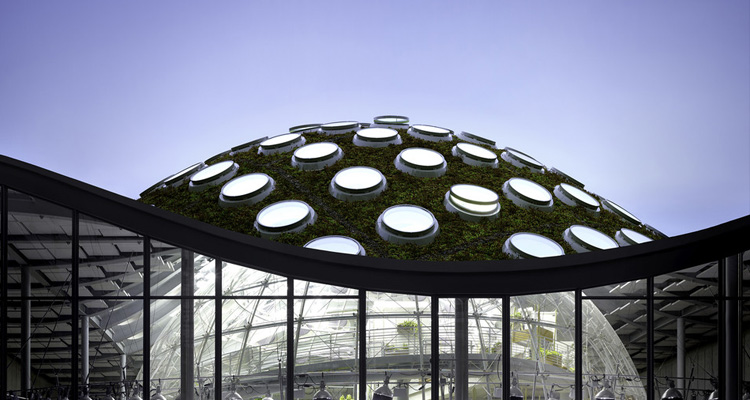 Soundwave explores architecture at California Academy of Sciences this Thursday, August 20