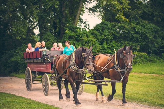 Upgrade your visit to The Hermitage with the Wagon Tour! Tickets available at www.thehermitage.com Listen to stories from your driver as the wagon travels to the First Hermitage, where Jackson lived from 1804 to 1821, the site of the Cotton Gin and Press, the Field Quarter and several archaeological sites associated with slavery and farming. Wagon Tours run daily - weather permitting. #7thPresident