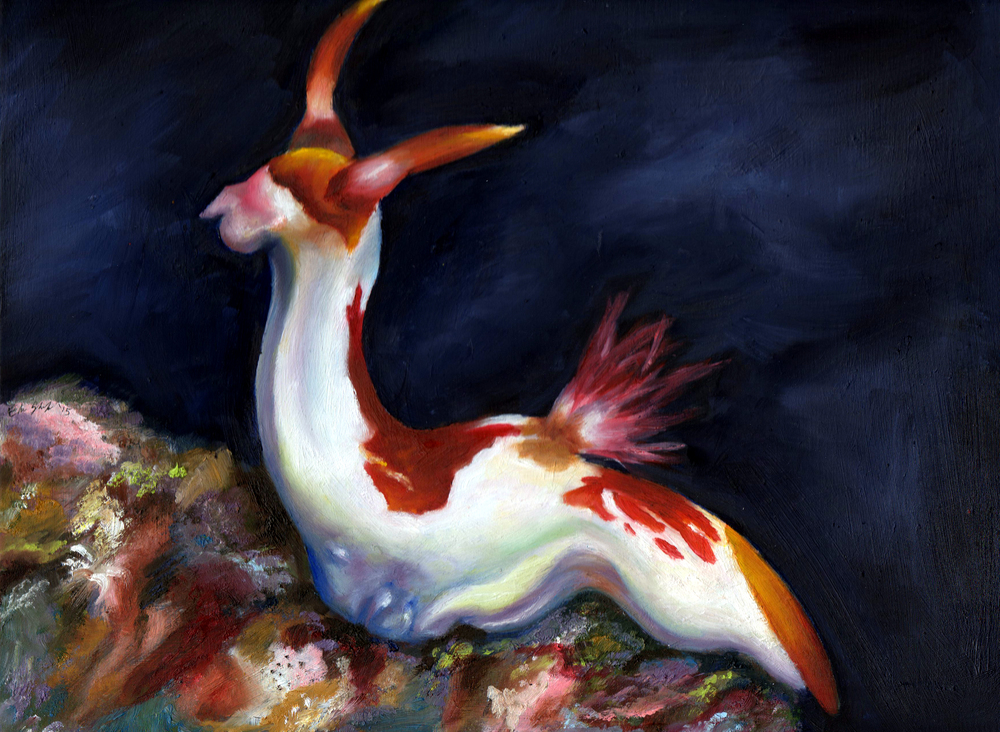 nudibranch022.jpg