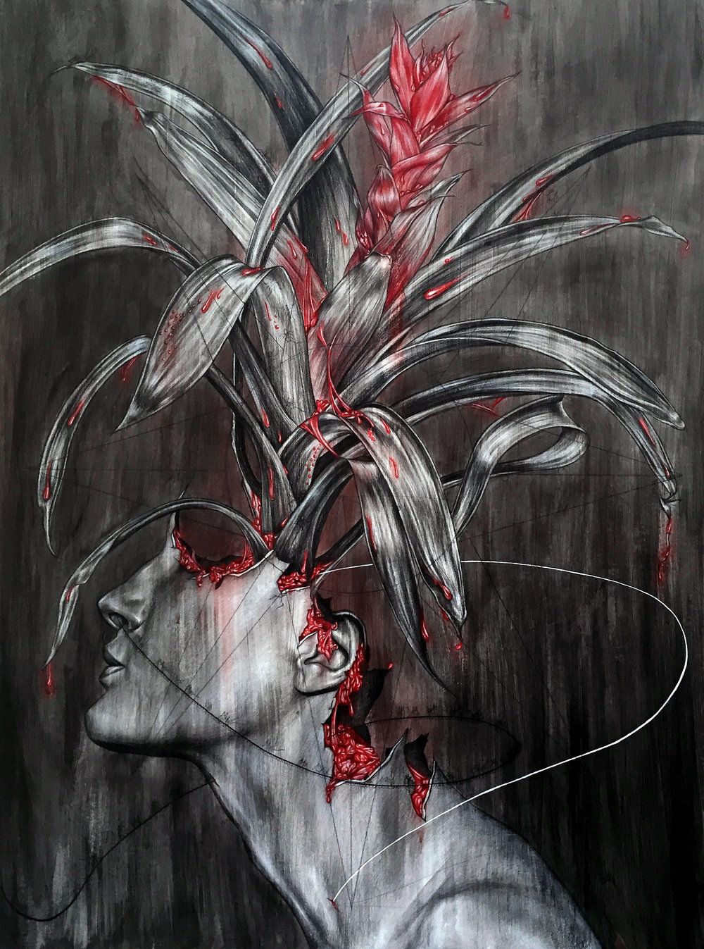There are Thin Dead Things in the Bromeliads