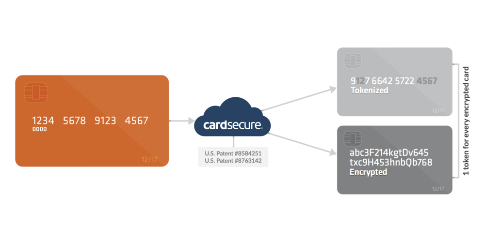 CardSecure, our encryption and patented tokenization, is built into everything we do so that each transaction is protected. No sensitive data touches yournetwork which removes it from PCI scope.