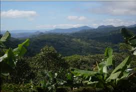 Nicaragua Madriz.jpg