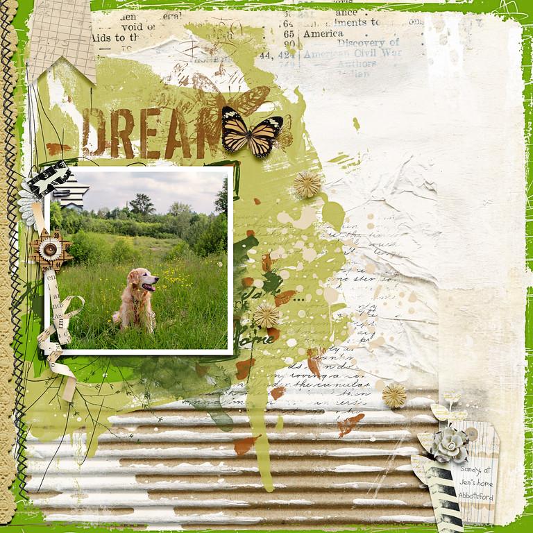 dream-XL.jpg