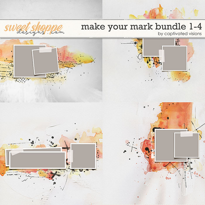 cvisions-makeyourmarkbundle1to4-700.jpg