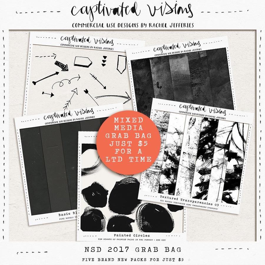 cvisions-nsd2017cugb.jpg