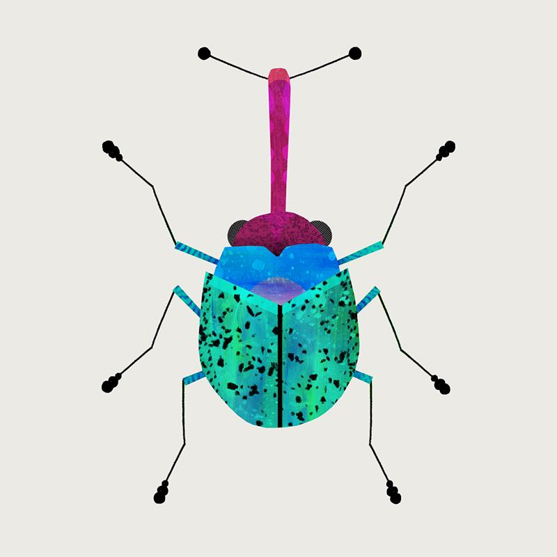 weevil-bug-by-Natasha-Durley.jpg