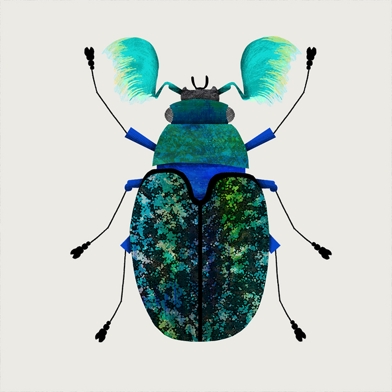 Big bug by Natasha Durley