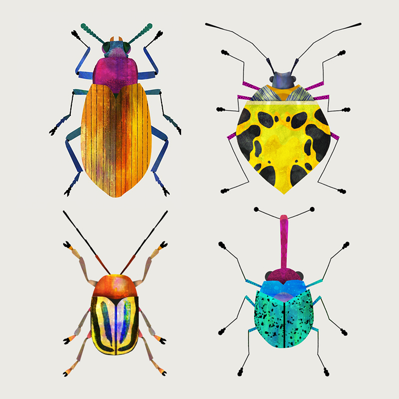 bugs+by+Natasha+Durley.jpg