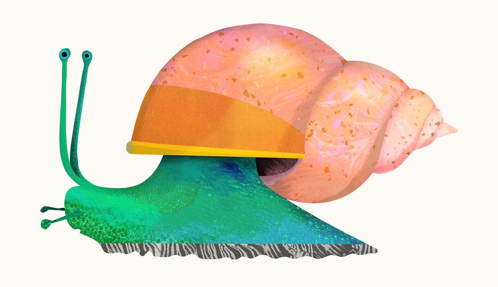 snail-by-Natasha-Durley.jpg