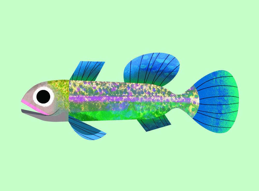 mint fish.jpg