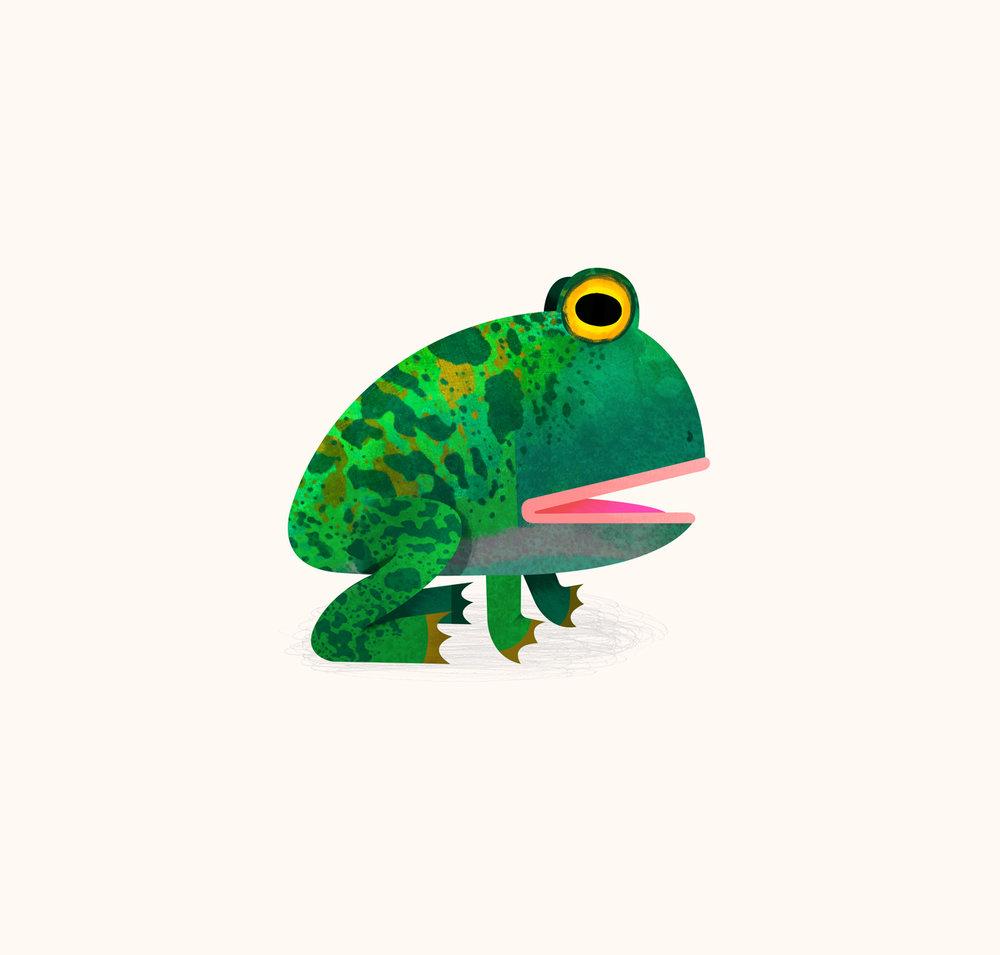 frog-by-Natasha-Durley.jpg