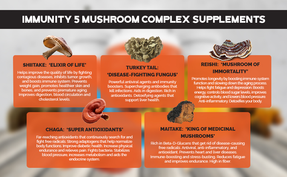 But don't go and choose just any supplement. Pick one that's rich in beta-glucans to make sure your body absorbs and takes advantage of every single bit of medicinal mushroom benefit. Opt for the one that's specifically made from the top-performing medicinal mushrooms like  Chaga, Reishi, Turkey Tail, Maitake, and Shiitake -- no other than the  Tribal Naturals Immunity 5 Mushroom Complex !