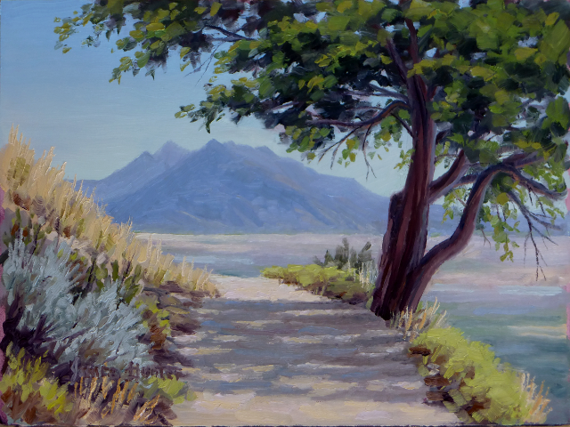 Shade Tree (SOLD)
