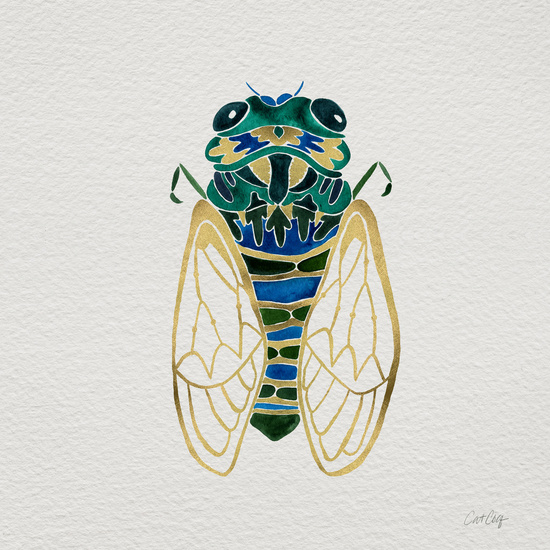 Cicada available  here .