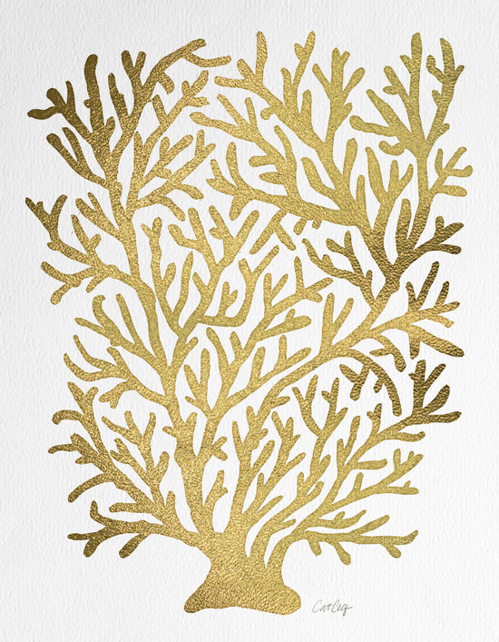 Gold Coral available  here .