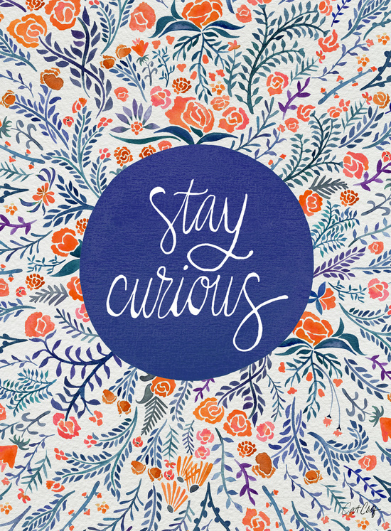 Stay Curious available  here .