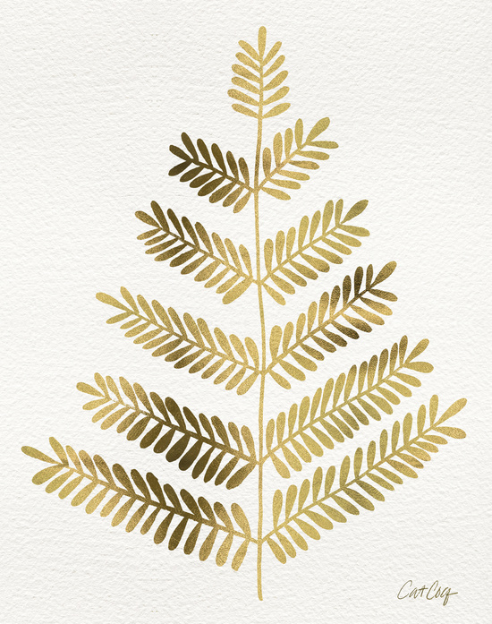 Leaflets available  here .