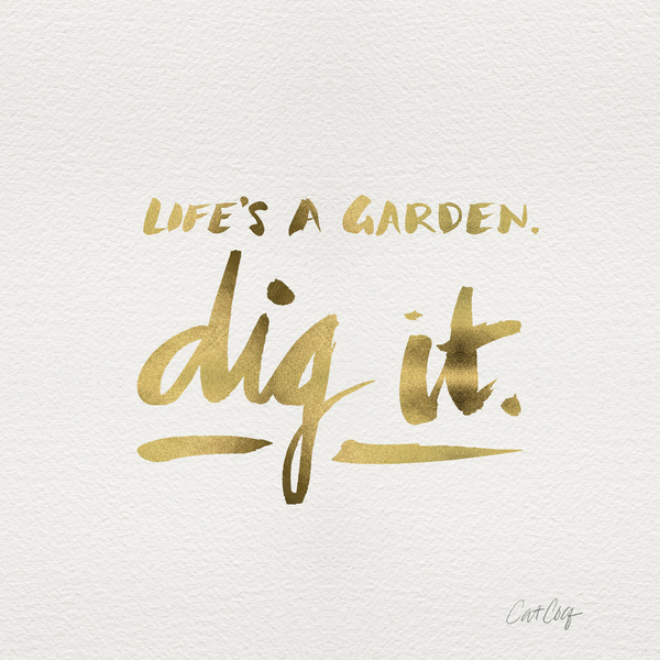 Dig It available  here .