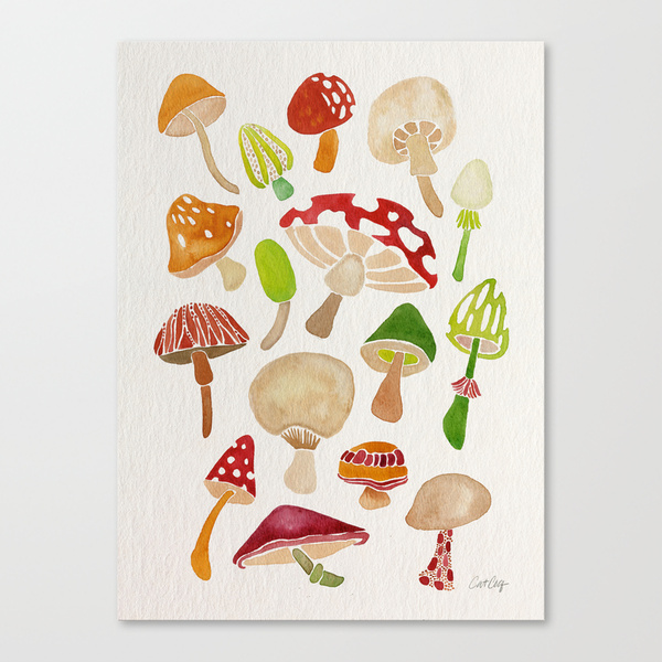 Mushrooms  •  stretched canvas print $85–$150