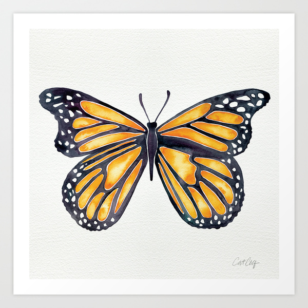 Monarch   •  art print $18–$65