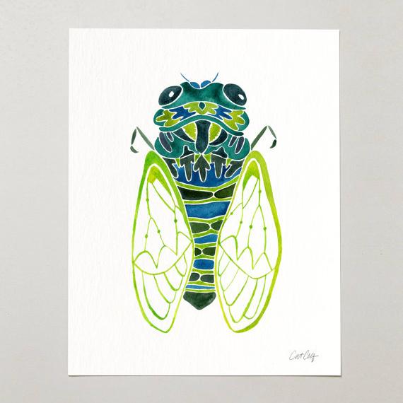 Cicada • art print $15