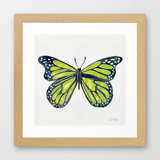 Lime Butterfly  •  framed art print $35–$135