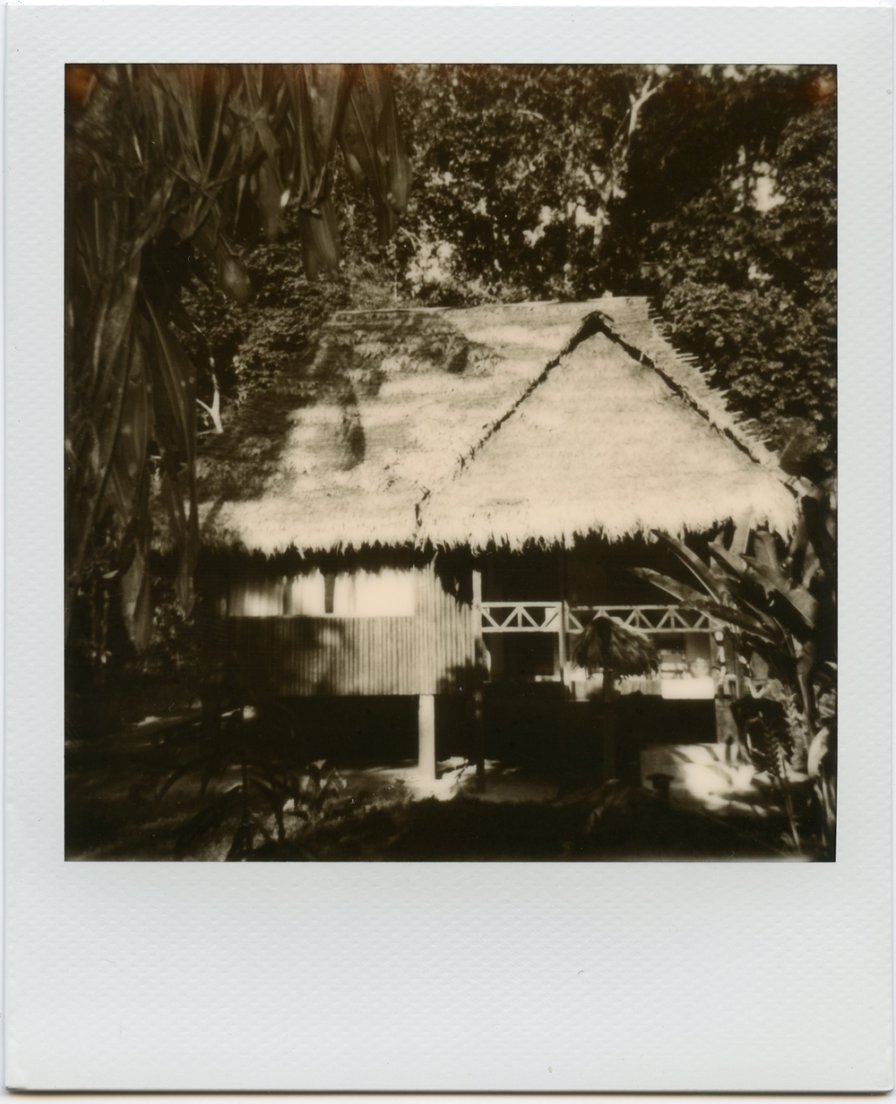 Polaroid-Amazon-7.jpg