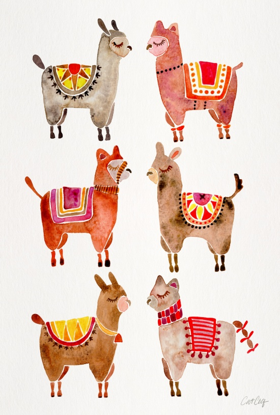 Alpacas available  here .