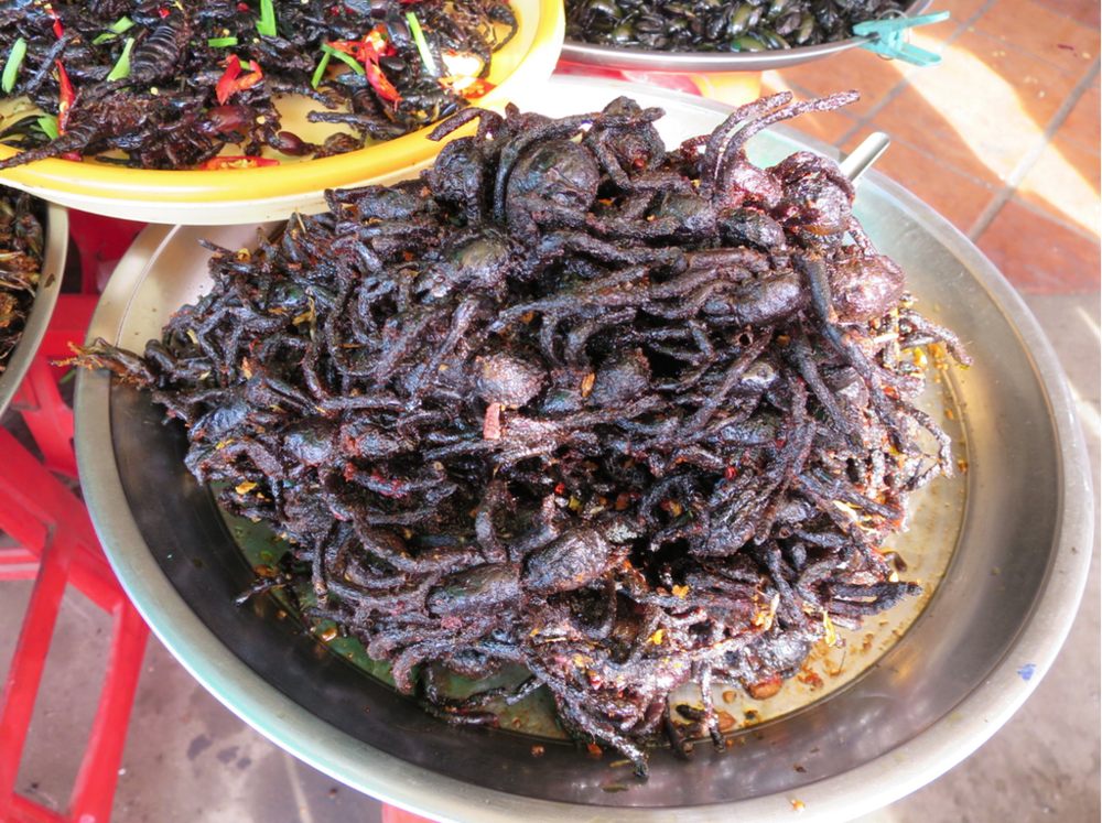 Deep-fried tarantulas