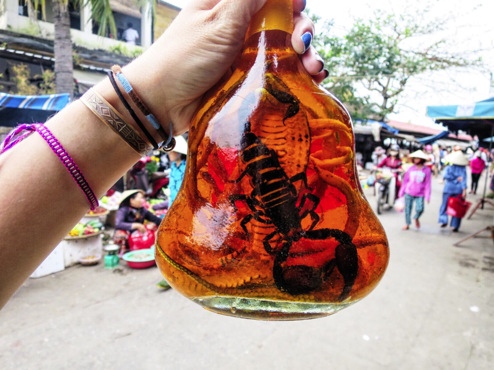 Scorpion + Cobra wine in the market of Hoi An, Vietnam. I'm finding countless things I want to bring home, but hesitate because I'm wary of getting all my cool shit taken away at customs. I found a window box containing dried bats in Saigon & a tray of pinned jewel-colored beetles in Phnom Penh.