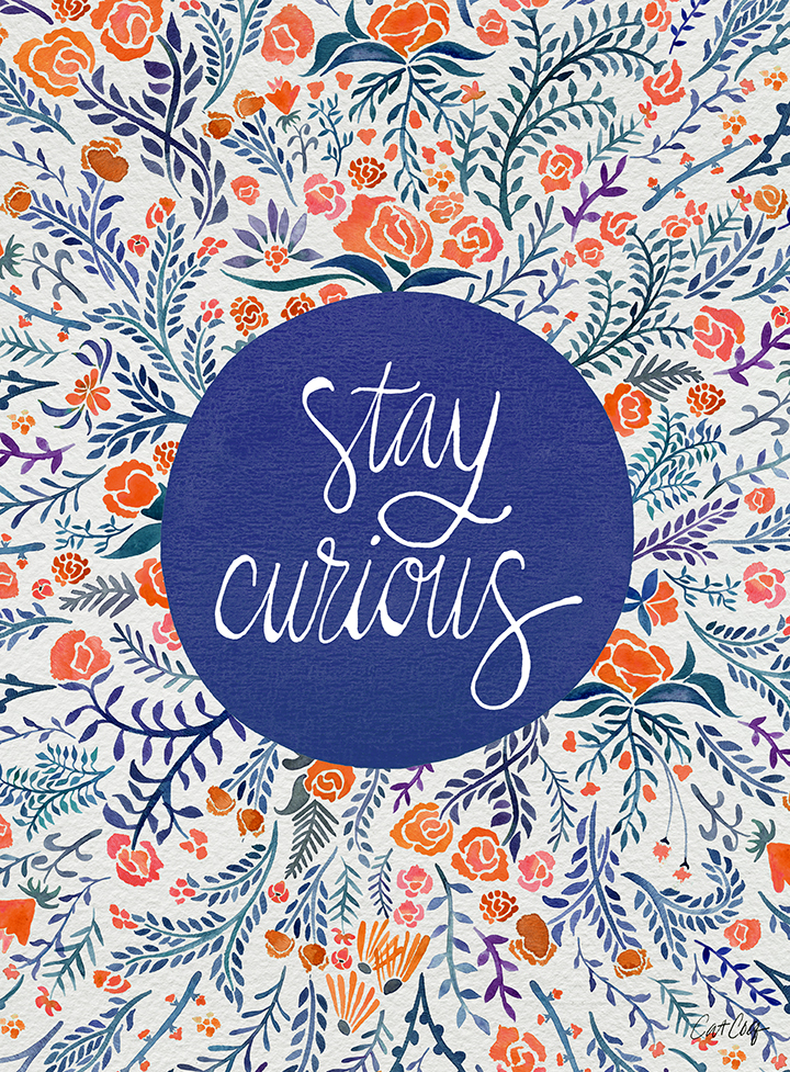 Stay Curious available here.