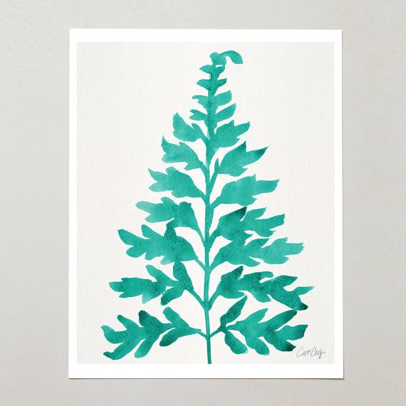 Ferns • $15