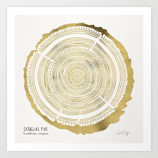 Douglas Fir • art print $18–$65