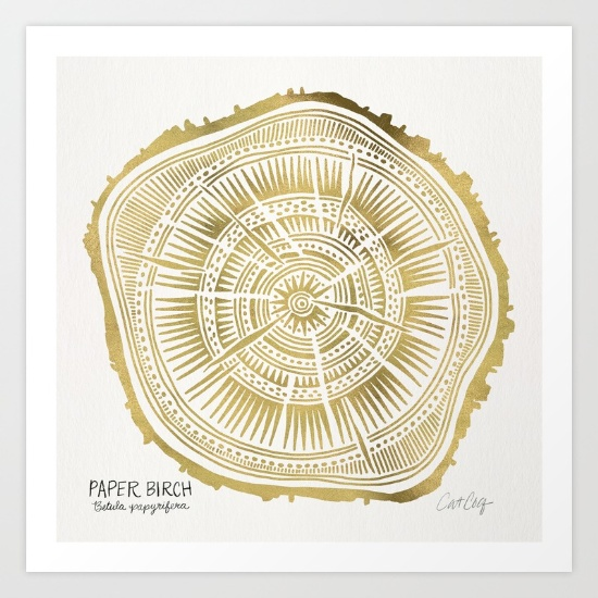 Paper Birch • art print $18–$65