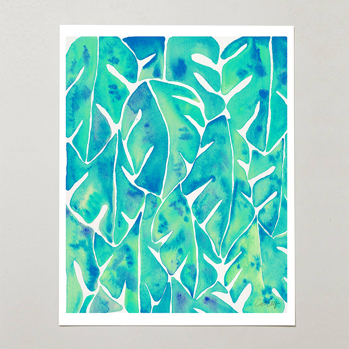 Turquoise-SplitLeafPhilodendron-web.jpg