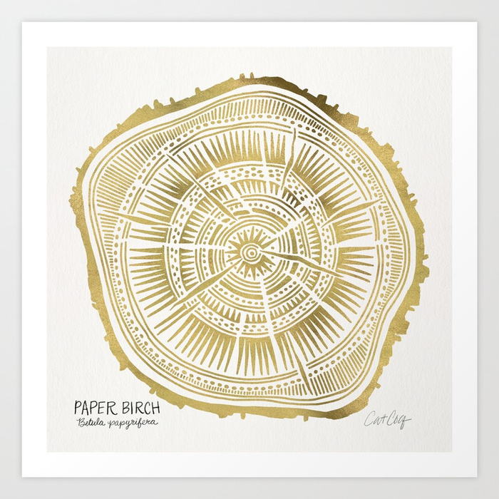 paper-birch--gold-tree-rings-prints.jpg