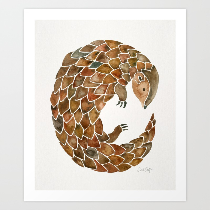 pangolin276360-prints.jpg